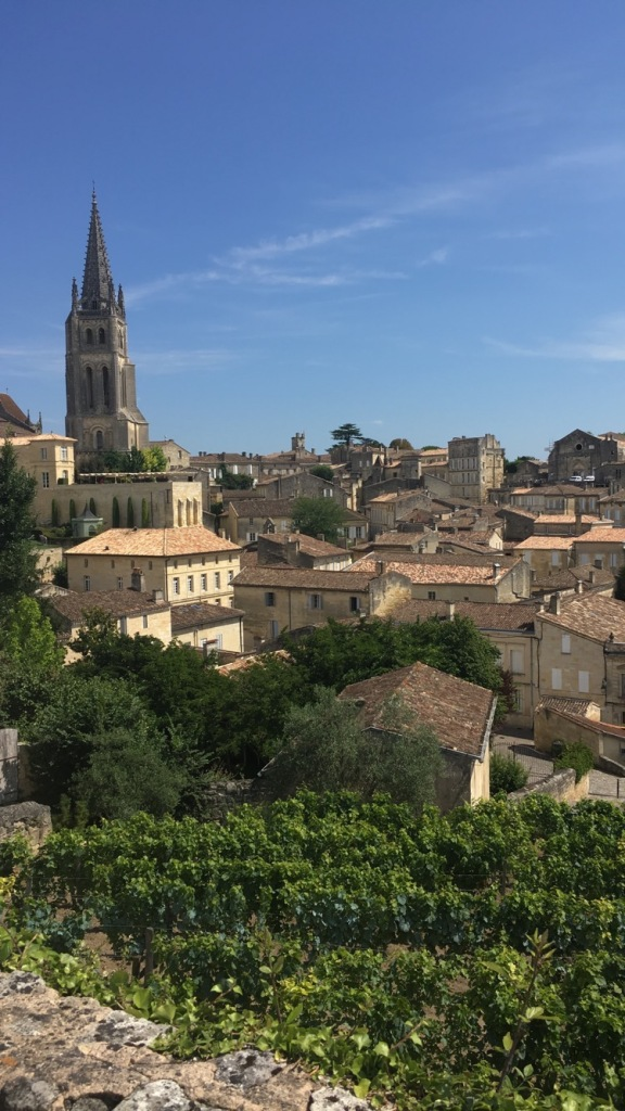 The view in Saint-Émilion with houses and vineyards