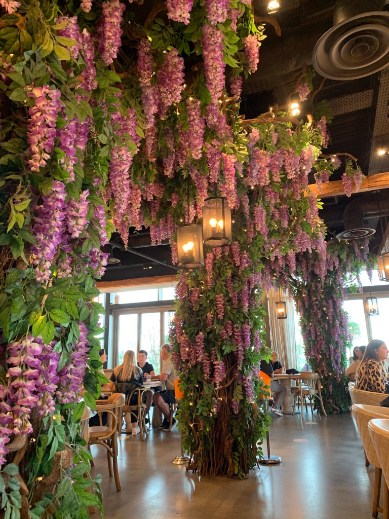 Purple wisteria inside Victors Oxford Westgate